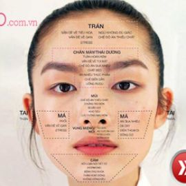 Nguyên nhân gây ra mụn và cách trị mụn từng vị trí trên khuôn mặt