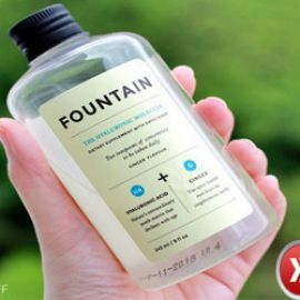 Review The Fountain Hyaluronic Molecule