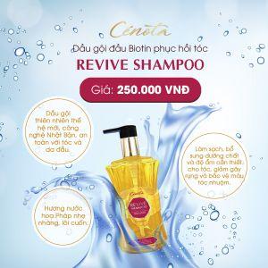 Dầu Gội Cenota Revive Shampoo